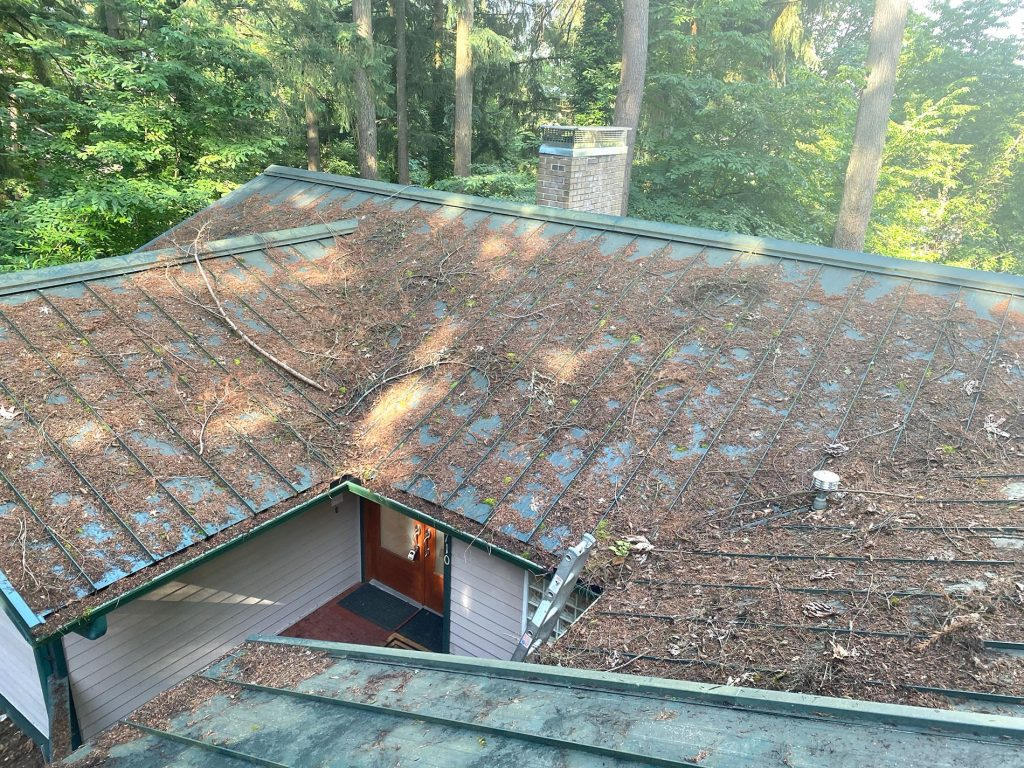 Roof Cleanup Example - Before